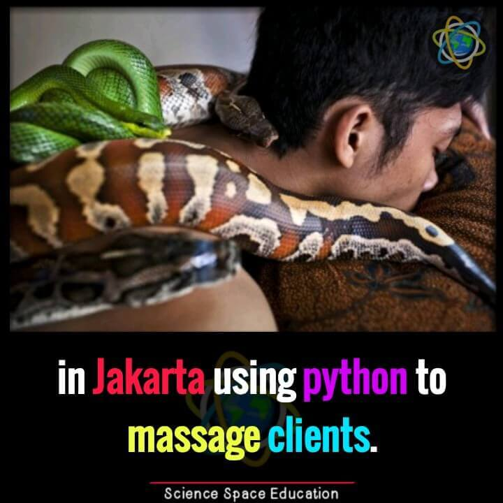 Python massage at a spa in Jakarta